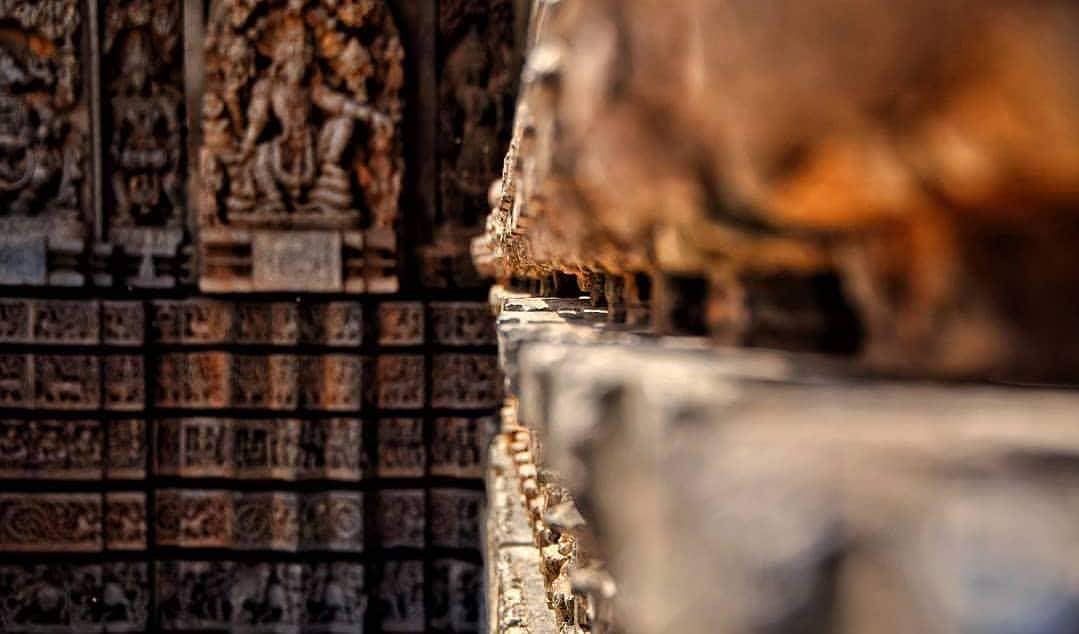 Caption Please!  . . #lost #temple #temples #losttemple #losttemples #lost_templ...